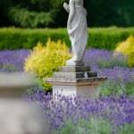 Classic and Elegant Garden