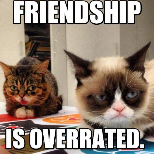 friendship is overrated
