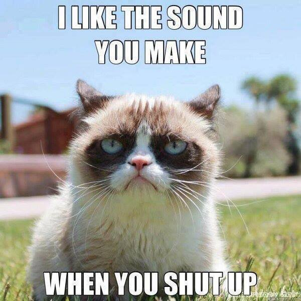 i like the sound you make when you shut up
