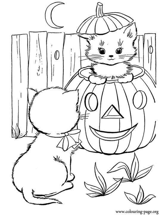 Halloween pumpkin and two cute kittens coloring page