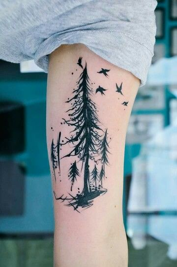 evergreen trees tattoo with birds