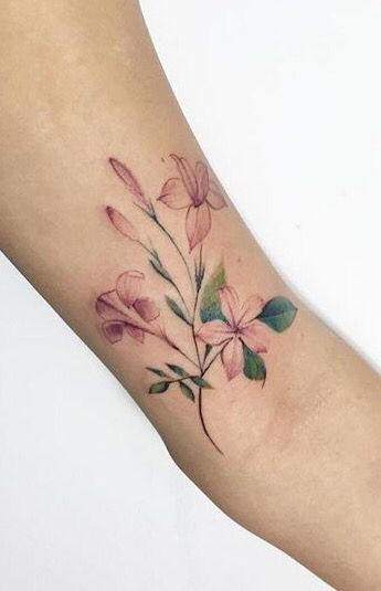 jasmine flowers tattoo design on arm