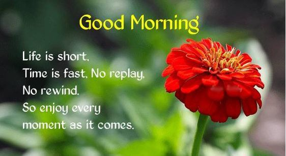 good morning sms message image