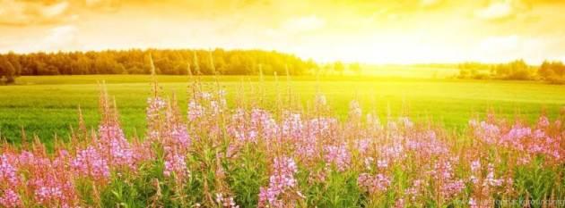 summer sunrise facebook timeline cover photo