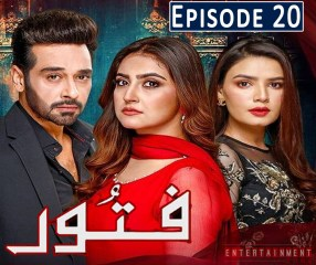 Fitoor Episode 20