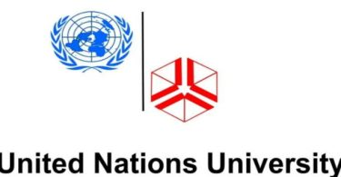 University Junior Fellows Internship Program 2020 by United Nations
