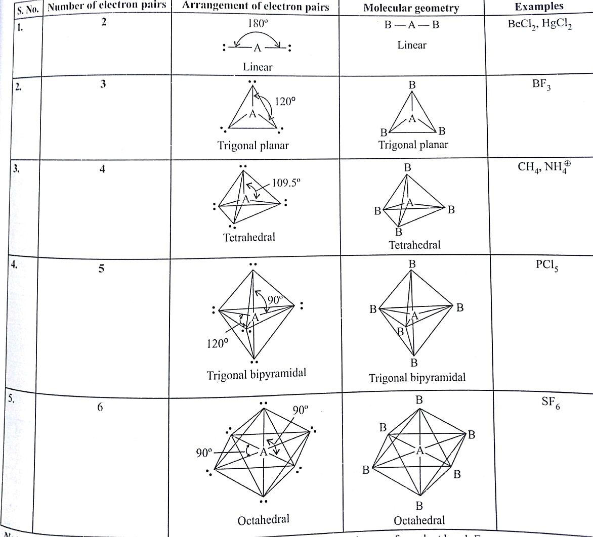I Have A Doubt Kindly Clarify The Correct Geometry And Hybridization For Xef4 Are