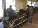 Rangiroa - ferme perlière
