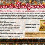 Flores de Bach para todos