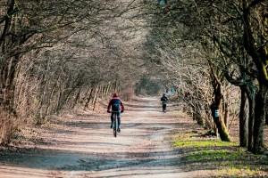 Ciclismo y medio ambiente