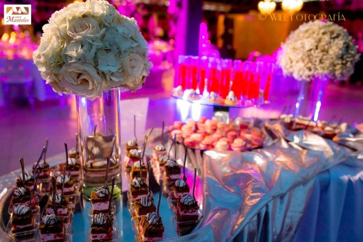 YA decoracion de bodas campestres en cali, matrimonios campestres en cali, organizacion bodas cali, entremanteles 9-
