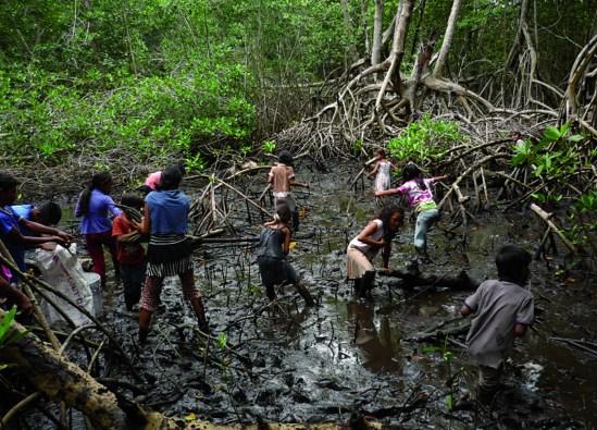 Vecinos de Tulate en el manglar de la zona, Tulate, Guatemala. Foto por: COGMANGLAR