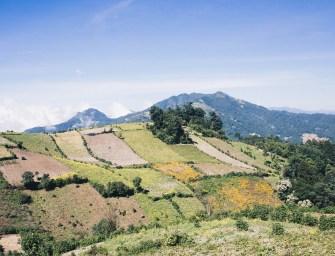 Alticultura y el futuro del Altiplano