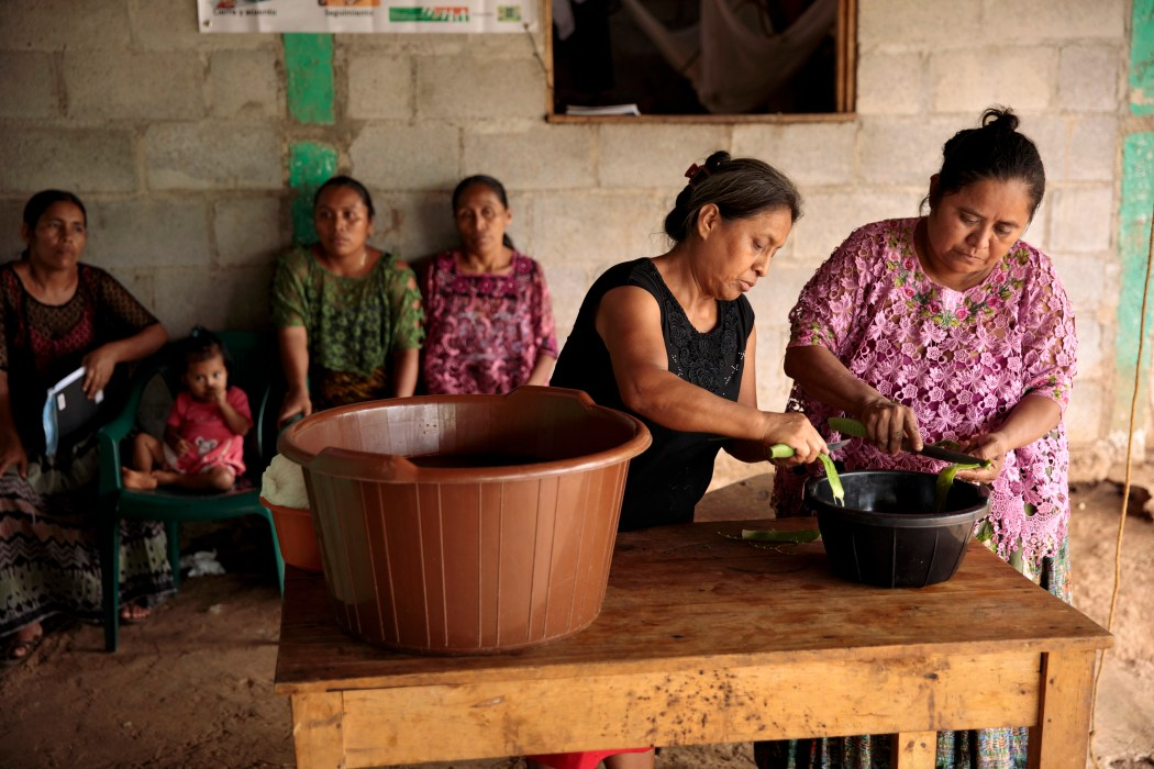 Guatemala – Rural Women Diversify Incomes and Build Resilience