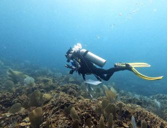 A Guatemalan Jewel under Threat:  Discovery and Exploration of the Cayman Crown Coral Reef