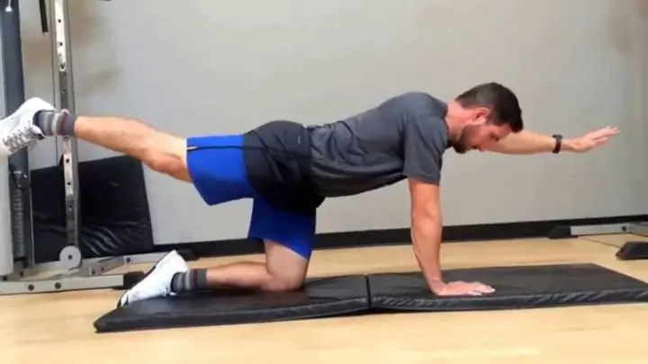 Plank contralateral