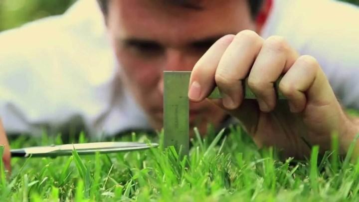 El mal hábito del perfeccionismo puede afectar tu éxito