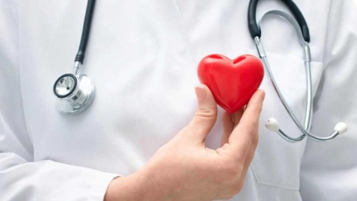 Las semillas de hinojo mejoran la salud cardiovascular