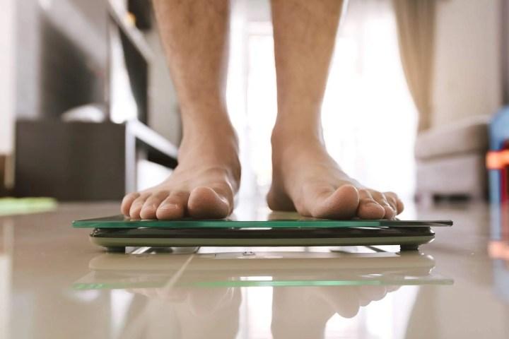 Las mejores básculas para medir la grasa corporal