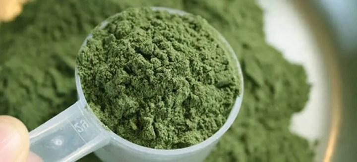 Cómo elegir la mejor proteína vegetal
