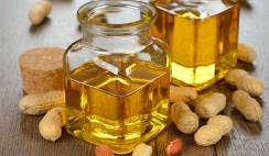 groundnut oil processing business
