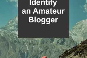 Identifying unprofessional bloggers in a crowded market has never been this easy