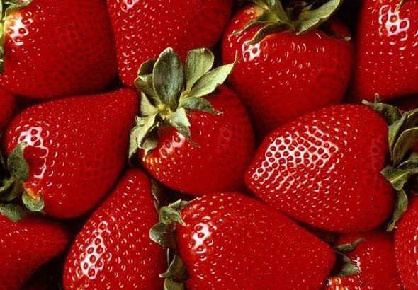 Disfruta de productos sanos, frescos y de calidad (I)