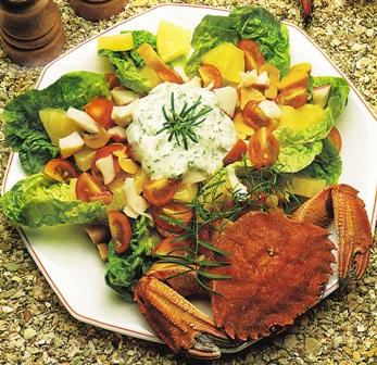 Salpicón de cangrejo con crema de eneldo