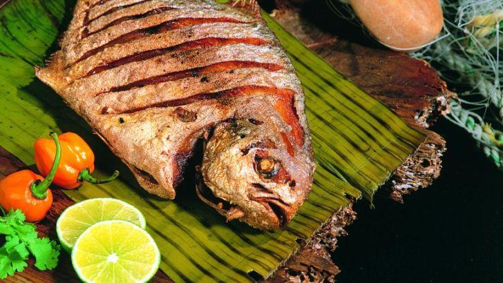 Disfrutar del mejor sabor del mar: El pescado (I)