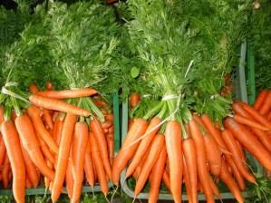 Zanahoria 1