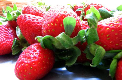 Escoger fresas y fresones