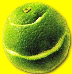 tiritas de piel de citricos