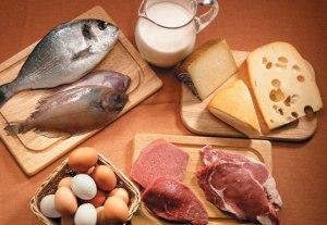 Clasificación de los alimentos