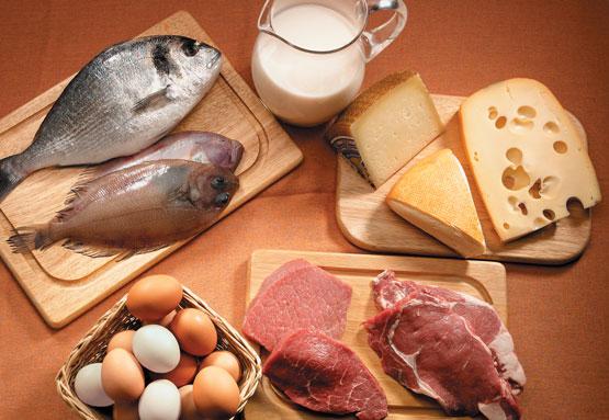 Clasificación de los alimentos según sus nutrientes