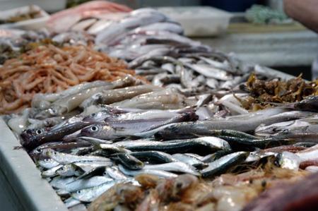 Beneficios y virtudes de comer pescado