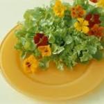 Flores en el menú