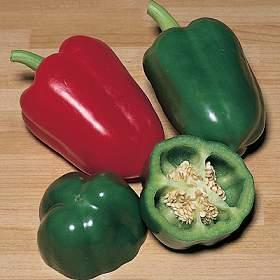 Nutrientes y beneficios de los pimientos