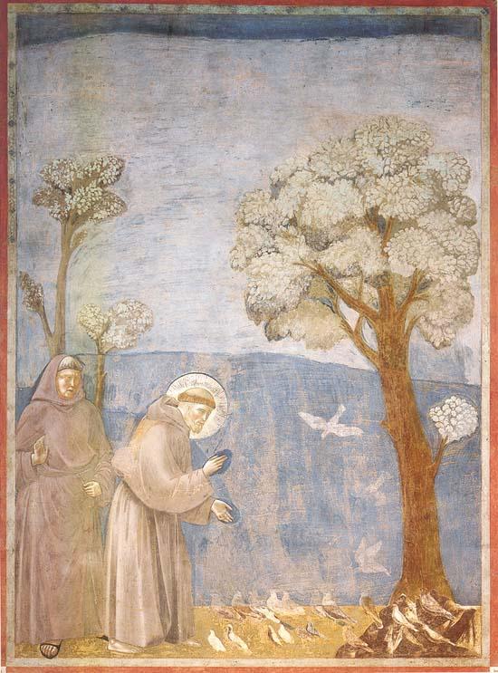 La predicación de las aves (1197-1199), Giotto.