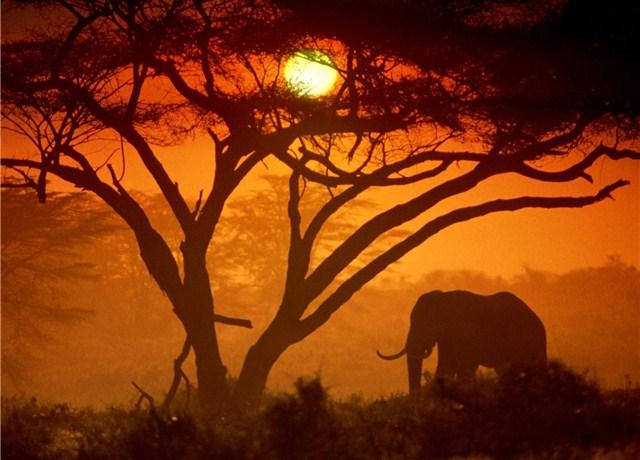 Tanzania-kenia-ParcoNazionaleAmboseli-004