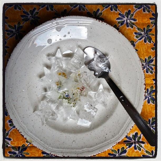 sopa-de-hielo-foto-charlesolsen