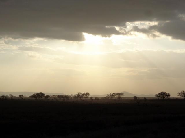 Sabana oscureciendo en Serengeti