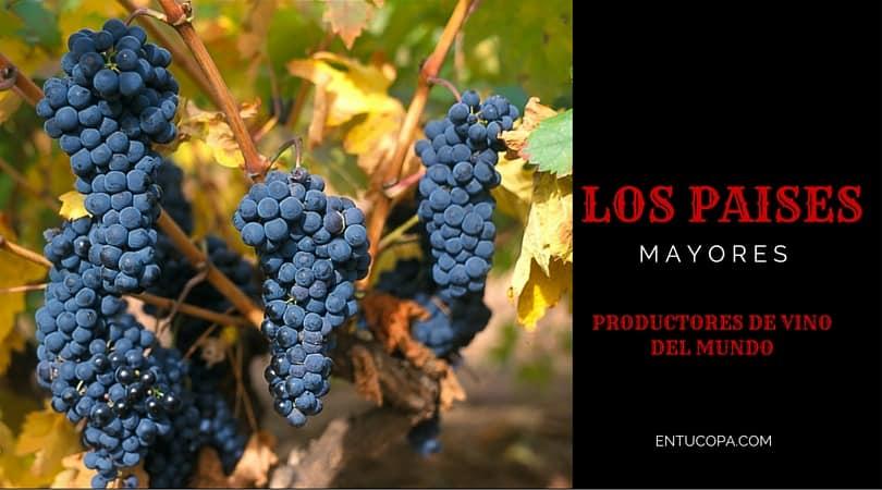 Los países mayores productores de vino del mundo