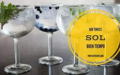 Gin Tonics, Sol y buen tiempo