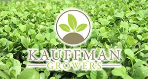 Kauffman Growers