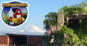 Vendor Spotlight: Meadowwood Farm
