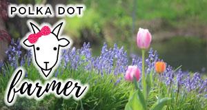 Polka Dot Farmer