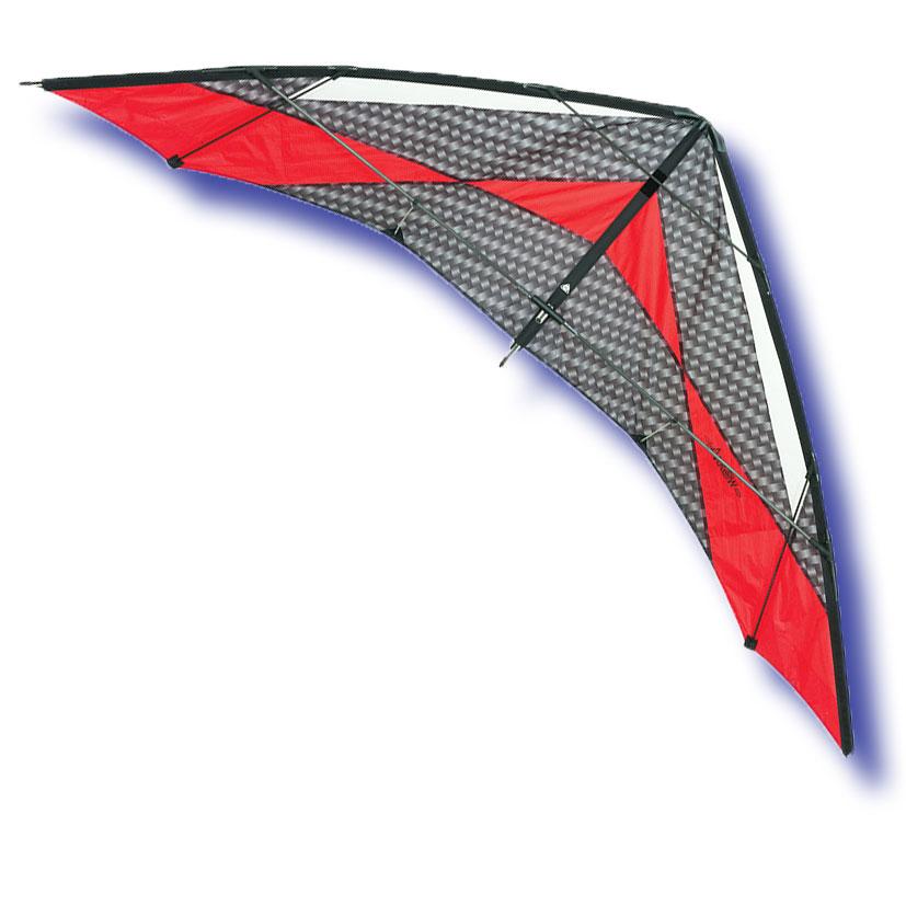 cerf volant aile
