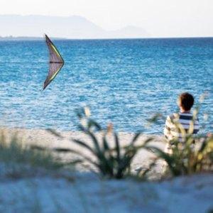 cerf volant de plage
