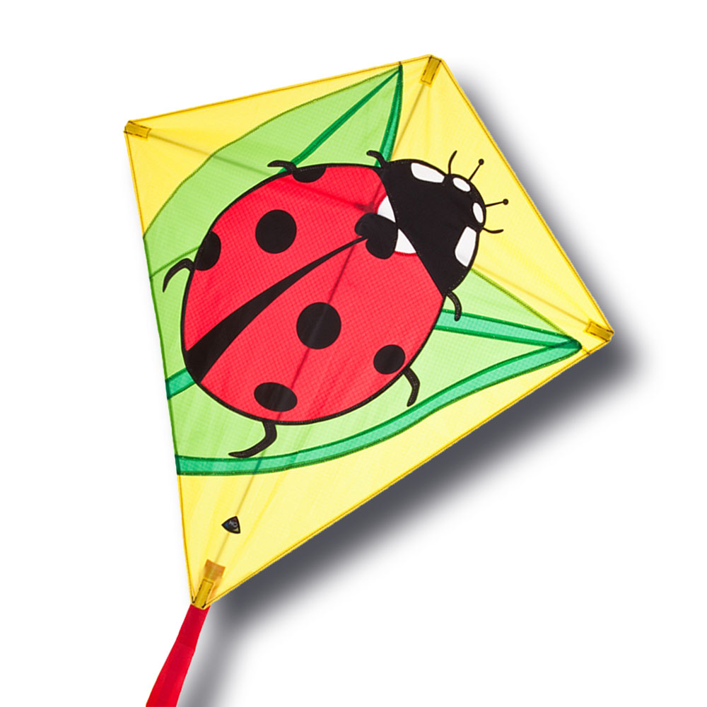 cerf volant coccinelle