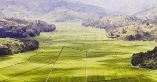 rwanda colinas